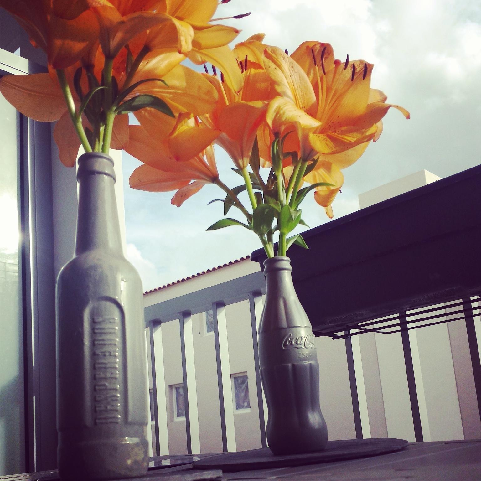 Vases diy